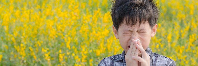 Allergy season air quality
